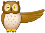 OWL Communication System